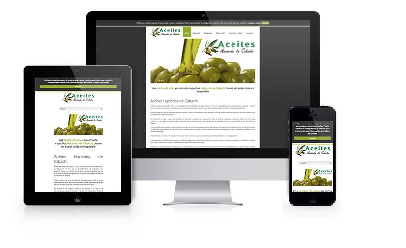 Sitio web corporativo para Aceites Hacienda de Cabachi, empresa dedicada a la elaboración de aceite de oliva mediante el sistema tradicional de capachos.